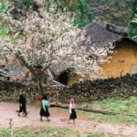 Supan Village Sapa