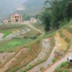 Budget Tours Hanoi Sapa