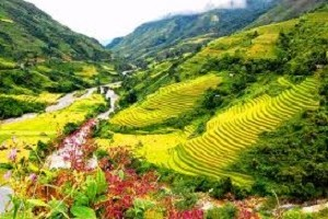 Sapa Tourist Information