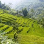 Some information about Sapa weather