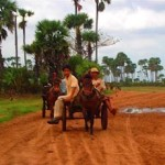 Kampong Speu Travel guides and reviews