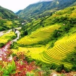 Trekking to Muong Hoa Valley