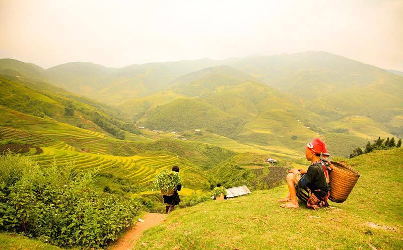sapa mountain and trek