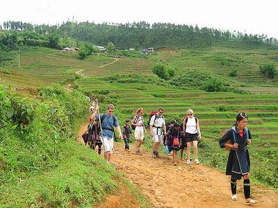 sapa trails