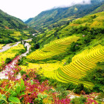 Sapa tours from Singapore