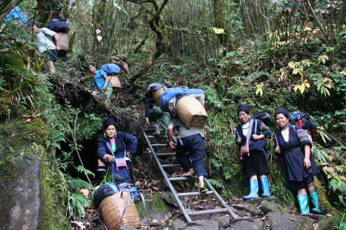 hmong porters