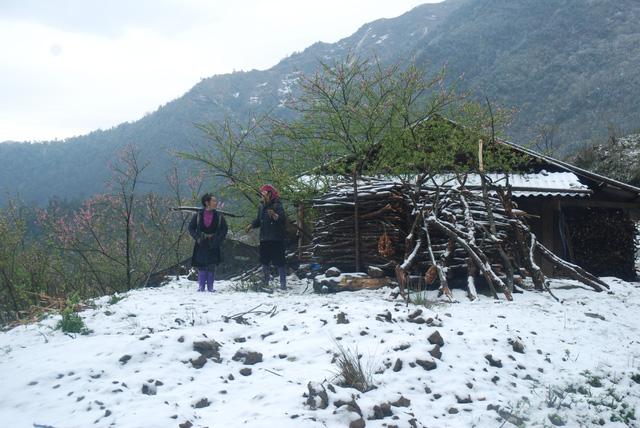 ethnic and snow